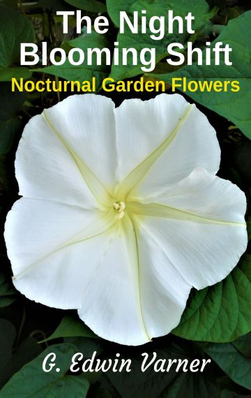 The Night-Blooming Shift: Nocturnal Garden Flowers