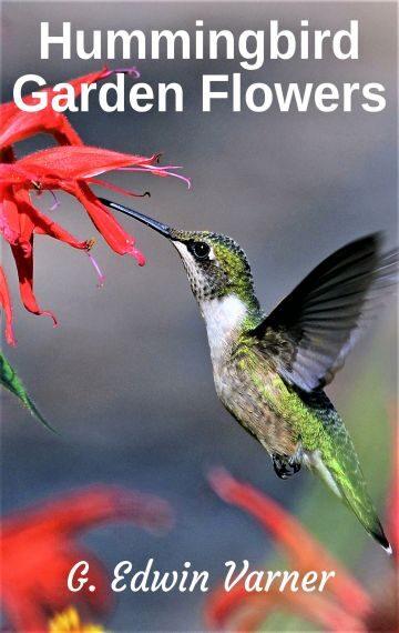 Hummingbird Garden Flowers